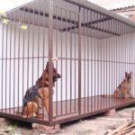 Ковка для животных, Вольеры